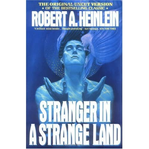A Stranger is Watching Book Summary and Study Guide