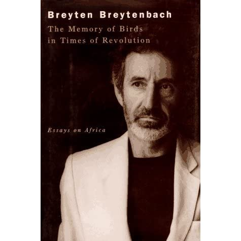 An analysis of breyten breytenbach s poetry