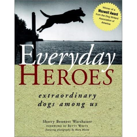 "everyday hero essay The rare ""everyday hero"" scholarship is for rare ""everyday hero"" scholarship opportunity the subject of the everyday hero essay may receive the rare."