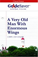 A Very Old Man with Enourmous Wings