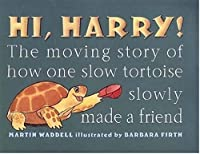 Hi, Harry!: The Moving Story of How One Slow Tortoise Slowly Made a Friend