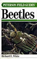 A Field Guide To The Beetles Of North America: Text And Illustrations