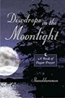 Dewdrops In The Moonlight