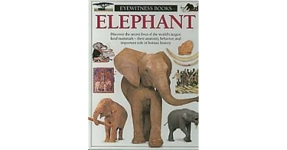 They saw the elephant book review