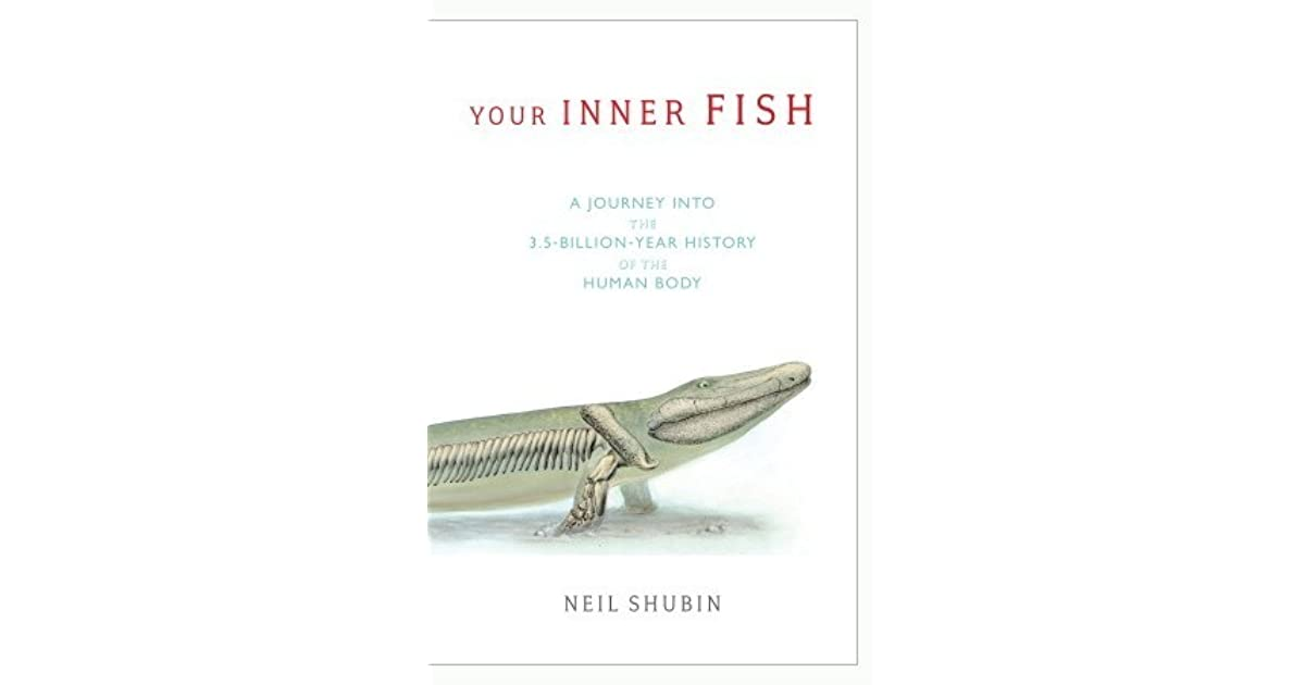 review on the inner fish Get this from a library your inner fish : a journey into the 35-billion-year history of  the human body  rating: (not yet rated) 0 with reviews - be the first subjects.