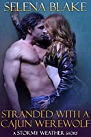 Stranded with a Cajun Werewolf (Stormy Weather #5)