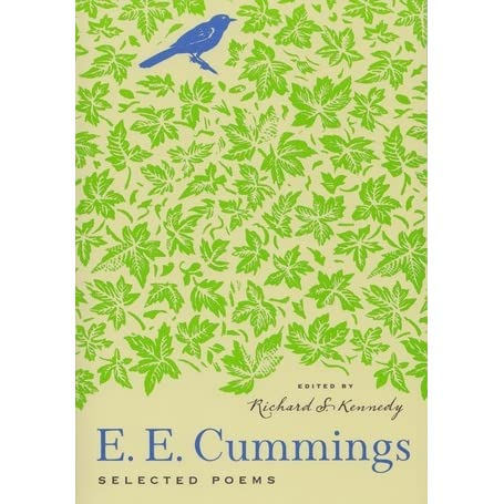 E.e. cummings from the enormous room. essay