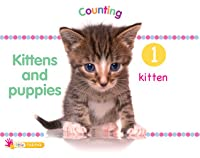 Kittens and Puppies: Counting