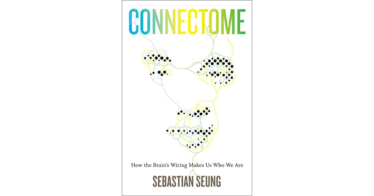 Connectome  How The Brain U0026 39 S Wiring Makes Us Who We Are By Sebastian Seung  U2014 Reviews  Discussion
