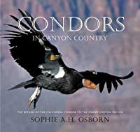 Condors in Canyon Country: The Return of the California Condor to the Grand Canyon Region