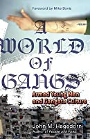 A World of Gangs: Armed Young Men and Gangsta Culture