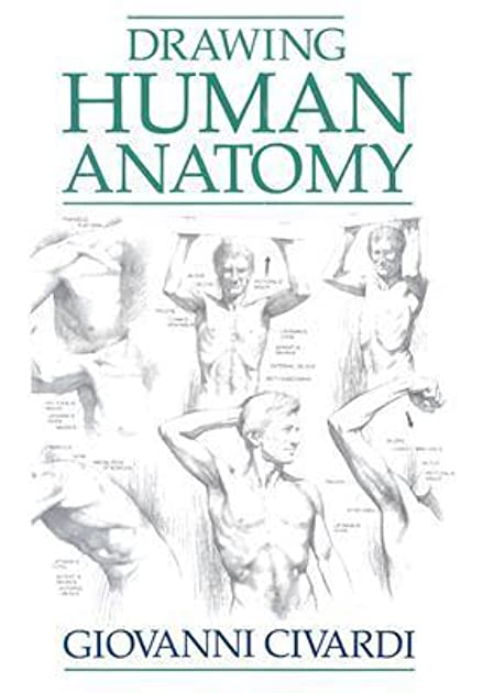 Drawing Human Anatomy By Giovanni Civardi U2014 Reviews Discussion Bookclubs Lists