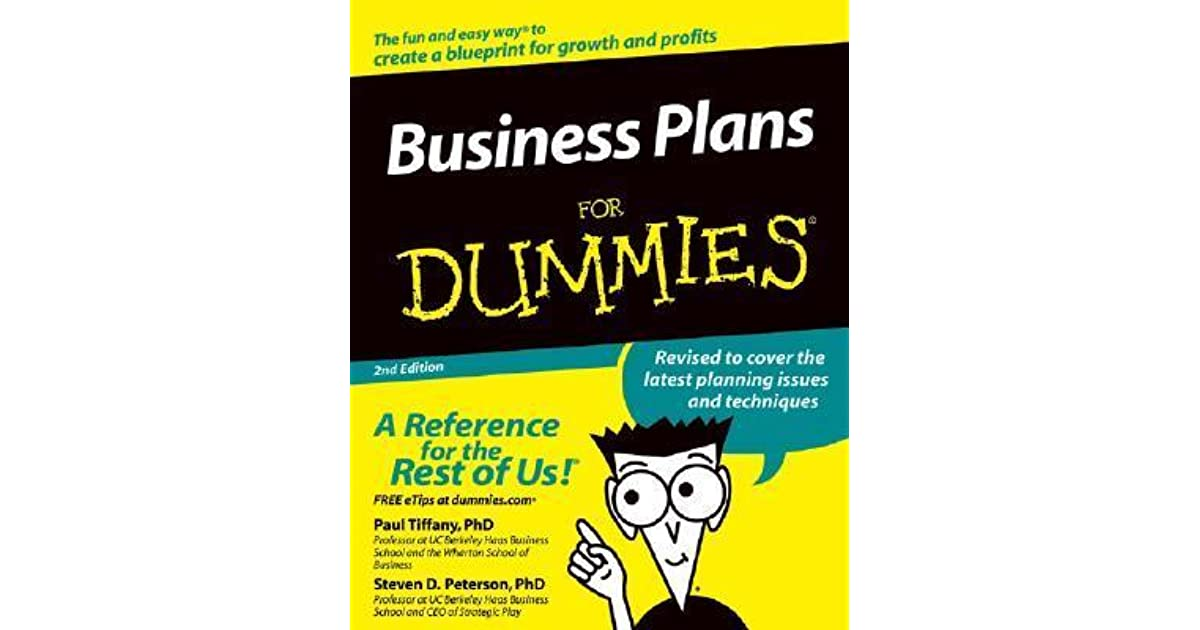 Business Plans For Dummies By Paul Tiffany Reviews