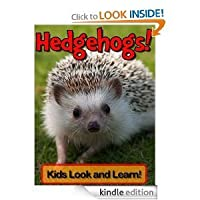 Hedgehogs! Learn About Hedgehogs and Enjoy Colorful Pictures - Look and Learn! (50+ Photos of Hedgehogs)