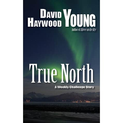 Book Review: True North by Roger Ronney