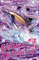 Stormy Skies (Silver Dolphins, #8)