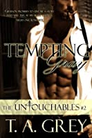 Tempting Gray (The Untouchables #2 )