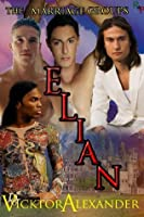 Elian (The Marriage Groups)