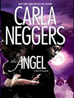 The Angel (The Ireland Series Book 2)