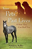 Your Pets' Past Lives: & How They Can Heal You