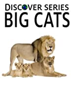 Big Cats: Discover Series Picture Book for Children (Kindle Kids Library)