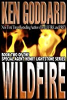 Wildfire (Special Agent Henry Lightstone Series)