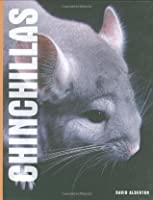 Chinchillas. David Alderton