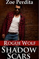 Shadow Scars (Haven City, #1)