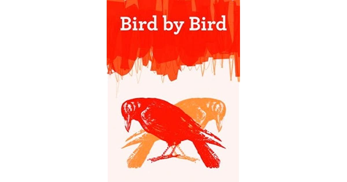 bird by bird some instructions on writing and life ebook