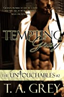 Tempting Gray (The Untouchables, #2)