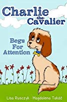 Charlie The Cavalier Begs for Attention: Charlie the Cavalier