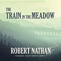 The Train in the Meadow