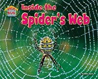 Inside the Spider S Web