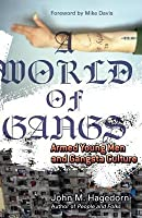 World of Gangs: Armed Young Men and Gangsta Culture