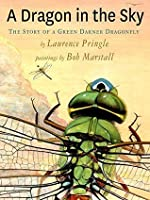 A Dragon in the Sky: The Story of a Green Darner Dragonfly