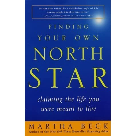 finding your north star book review