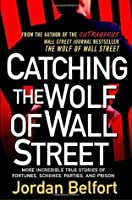 Catching the Wolf of Wall Street: More Incredible True Stories of Fortunes, Schemes, Parties, and Prison (The Wolf Of Wall Street, #2)