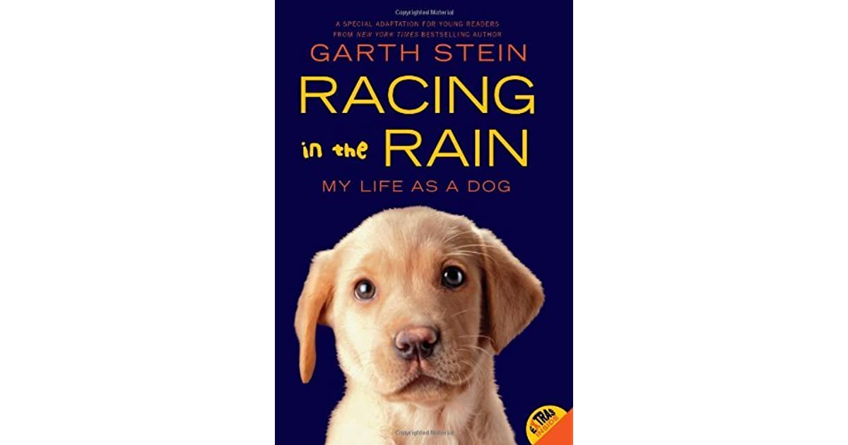 experience as a learning process in the novel the art of racing in the rain by garth stein Garth stein has had an illustrious career he's produced an academy award-winning documentary and his last book, the art of racing in the rain, sold over four million copies now he's back with a new novel, a sudden light, which is about a family confronting its long buried secrets as it.