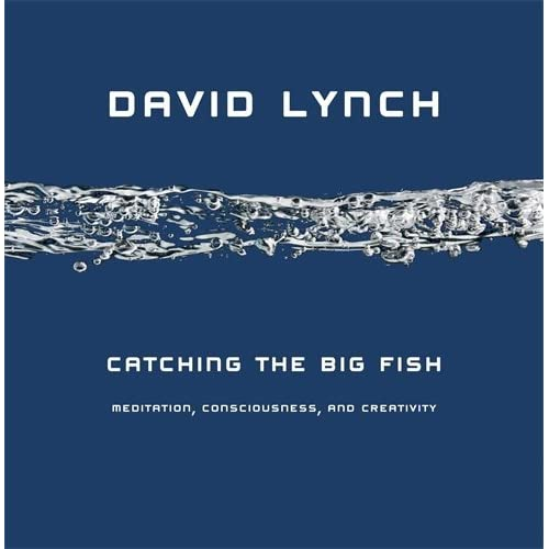 Catching the big fish meditation consciousness and for Big fish book