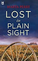 Lost in Plain Sight (The Brotherhood of the Raven #1.5)
