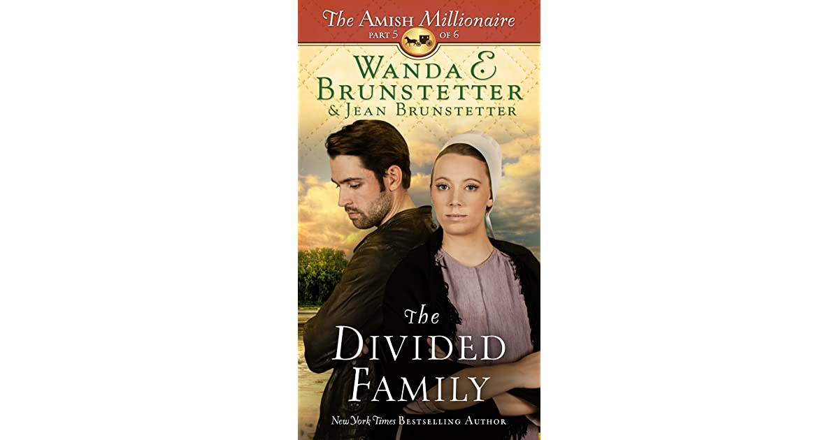 The Divided Family (The Amish Millionaire #5) By Wanda E