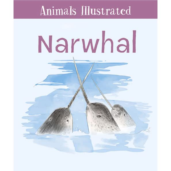 How to start a essay on a narwhal