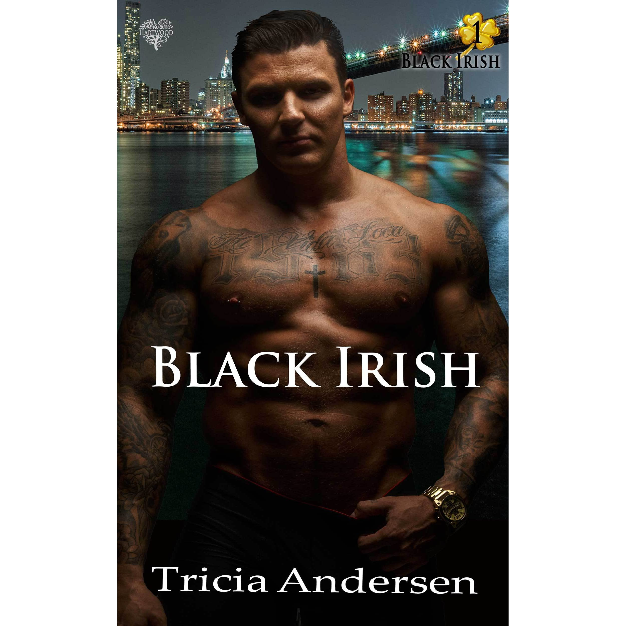 black irish by tricia andersen reviews discussion bookclubs lists. Black Bedroom Furniture Sets. Home Design Ideas