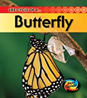 Life Cycle of a Butterfly - Young Explorer (Life Cycle of a...)