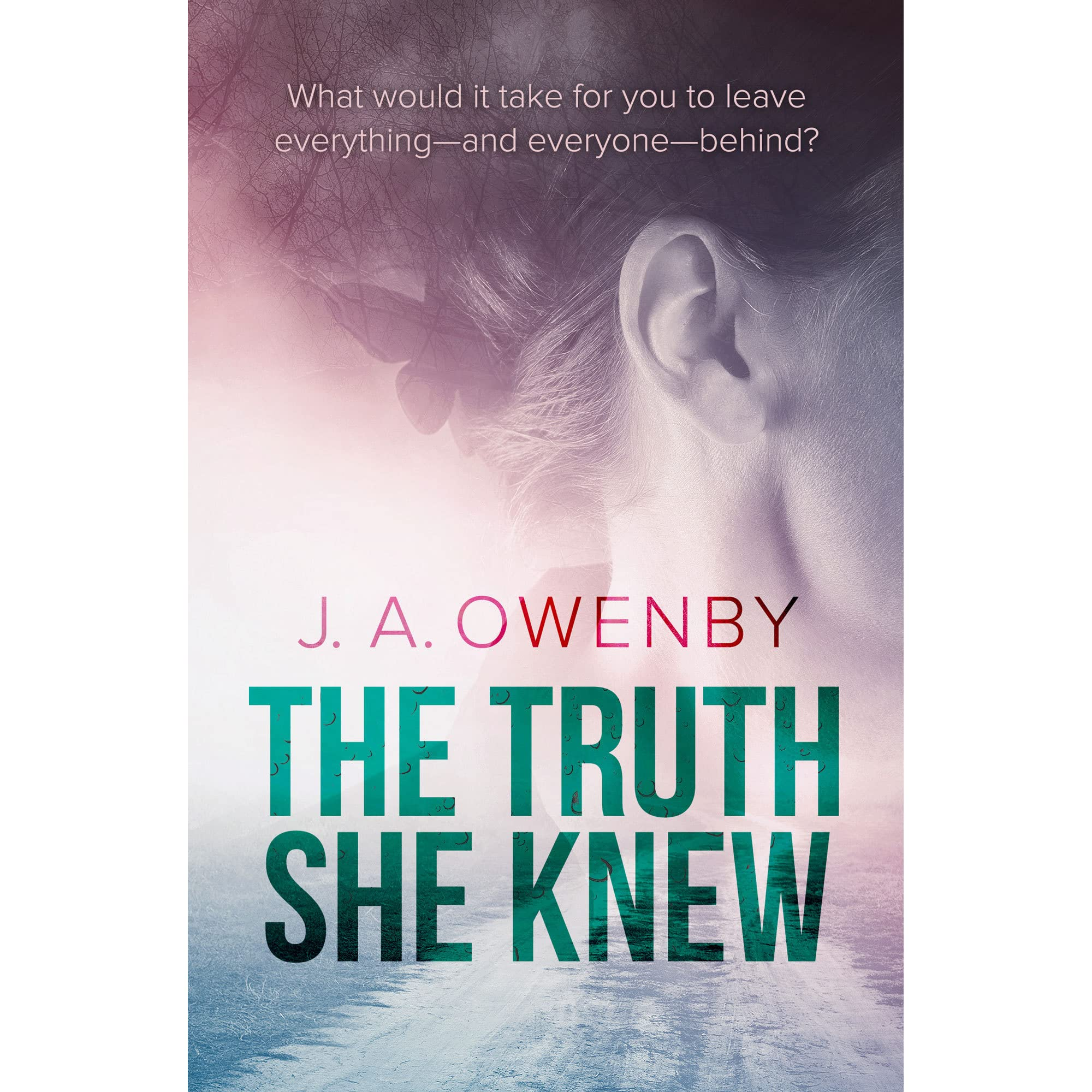 The Truth She Knew (the Truth Series #1) By Ja Owenby €� Reviews,  Discussion, Bookclubs, Lists
