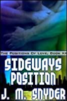 Sideways Position (The Positions Of Love, #12)