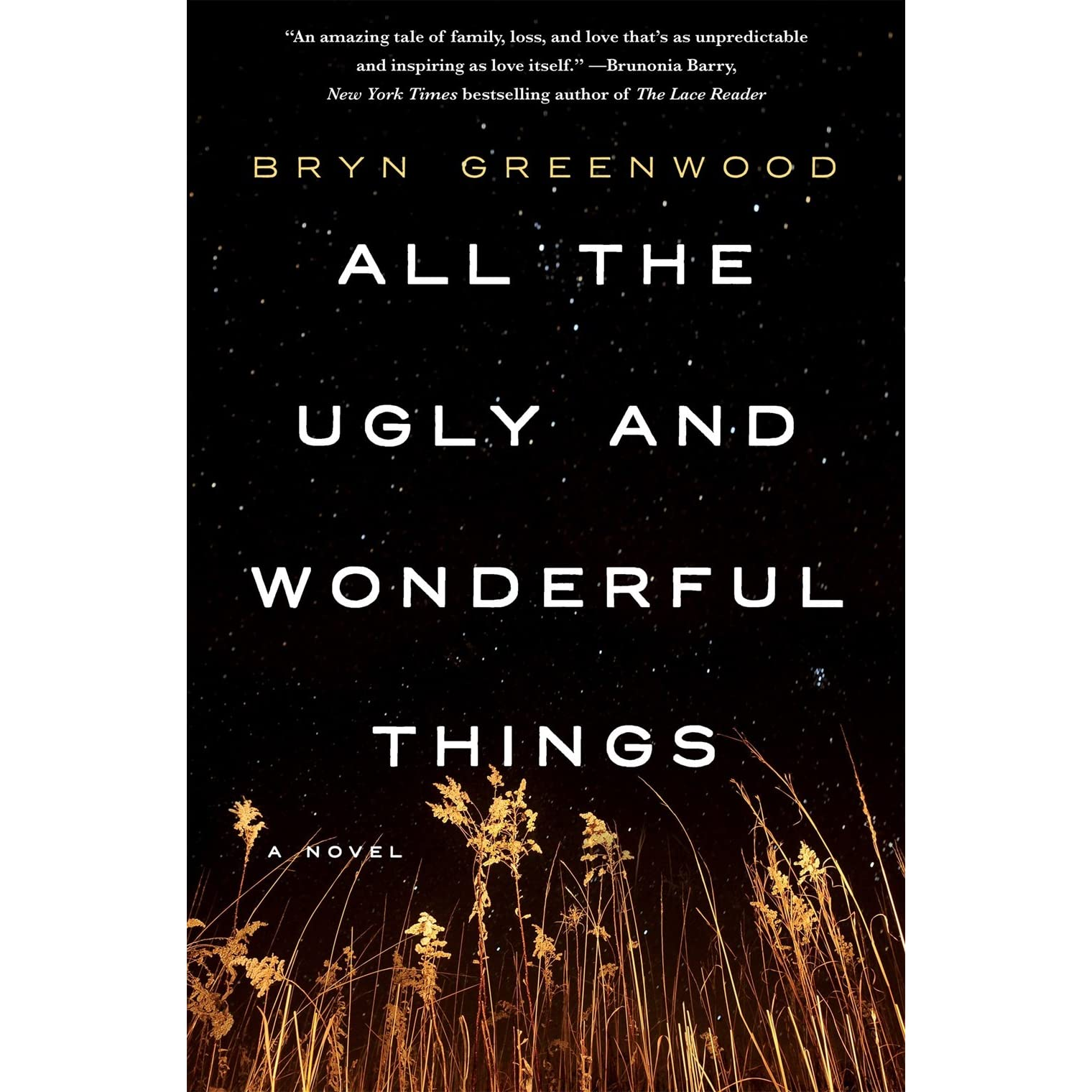 all the ugly and wonderful things by bryn greenwood reviews discussion bookclubs lists. Black Bedroom Furniture Sets. Home Design Ideas