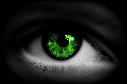 Image result for IMAGES OF BRILLIANT GREEN EYES