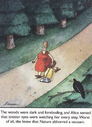 The Complete Far Side, 1980–1994 by Gary Larson — Reviews ...