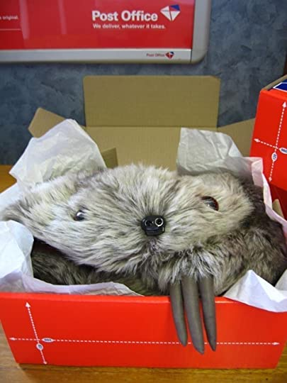 sloth in a box